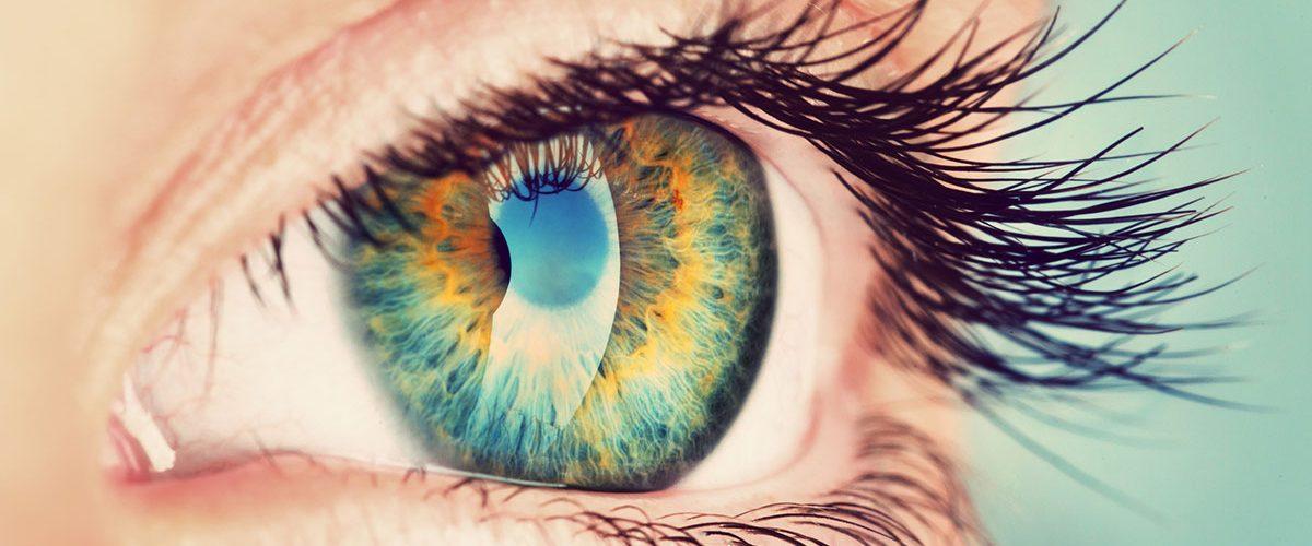 Claus Krell Optik - Ihre beste-Brille
